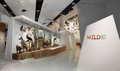 Exhibit Entrance, Wild: Amazing Animals in a Changing World, Melbourne Museum, MV Studios, Museum Victoria #SEGD