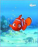 Unterwasser Bettwäsche mit tollem Aufdrck von Findet Nemo, Kopfkissenbezug: 80 x 80 cm + Bettbezug: 135 x 200 cm, 100 % Baumwolle. Finde süße Träum mit Nemo und Dori. Mehr dazu auf: www.ztyle.de