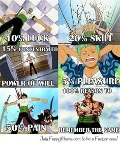 Remember the Name!! Roronoa Zoro