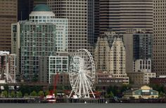 Have you heard the buzz? Seattle has a hot new attraction on the waterfront and both Seattle families and tourists are flocking to The Seattle Great Wheel to see the city in a whole new way – from nearly 200-feet…