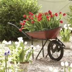 Decorative Garden Wheelbarrow from Through the Country Door®