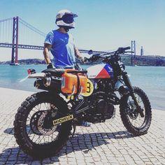 Honda Dominator, Honda Scrambler, Scrambler Custom, Scrambler Motorcycle, Blitz Motorcycles, Honda Motorcycles, Vintage Motorcycles, Custom Motorcycles, Custom Bikes