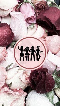 Rose Flower Hd, Rose Flower Wallpaper, Flower Background Wallpaper, Beautiful Rose Flowers, Background Pictures, Red Flowers, Red Roses, Instagram Frame, Instagram Logo