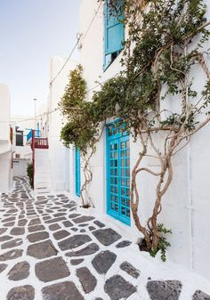 Whitewashed houses in Mykonos