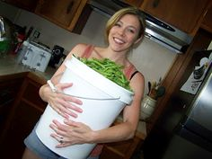Poppy's Money Tree House: How to Preserve Green Beans Without Canning