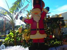 03-Christmas-on-Crete-Greece-holidays-on-Crete-greece-in-the-winter-57 Greek Christmas, Christmas And New Year, Winter Holidays, Christmas Holidays, Holiday News, Sandstone Wall, Holiday Program, Different Wines, Heraklion