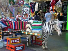 """Tijuana, Mexico: This border city is a frequent """"tourist"""" destination for cheap drinks and nightlife. I joined a group that went to serve at a small orphanage just on it's outskirts in 2003. Again, such depravity surrounded by such ridiculous """"tourist"""" spending. I actually saw this donkey painted like a Zebra when we went to town to the bakery."""