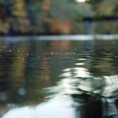 Fall water.