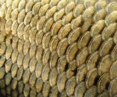 fishscale carving - Google Search