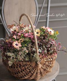 拡大イメージ表示 Garden Boxes, Garden Planters, Gifts For Photographers, Rustic Gardens, Flash Photography, Green Garden, Green Flowers, Container Gardening, Floral Arrangements