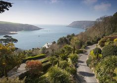 Salcombe, Devon, England....ahhhh, the view