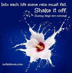 Positivity quote via notsalmon.com
