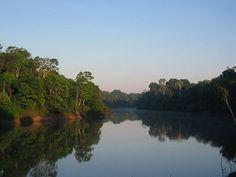 The Amazon Rainforest – Riverboat Tours Credit: markg6 (via Flickr.com)