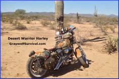 Road warrior by dave barry