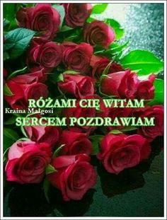 Rose, Flowers, Plants, Humor, Parts Of The Mass, Good Morning, Cheer, Floral, Humour