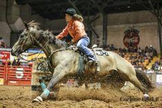 barrel racing horse