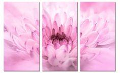 Drieluik canvas schilderij Roze Chrysant