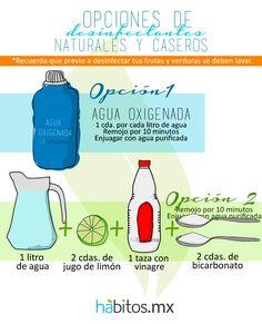 Opciones de desinfectantes naturales