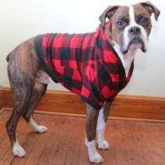 Dog Hoodie in Buffalo Plaid for Large boy/girl by BullenBeisser