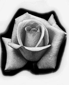 Lotus Flower Tattoo Design, Floral Tattoo Design, Desenho Tattoo, Tattoo Studio, Black And Grey, Cool Designs, Realistic Rose Tattoo, Artistic Tattoos, Fantasy Art
