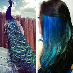 Hair colour #peacock