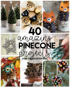 I love crafting with pinecones–because all you have to do is find a good tree and gather a big pile for free! And free is my jam! So here are 40 awesome pinecone crafts and projects you can do with that stockpile of pinecones!  This post may contain affiliate links Reindeer Ornament Colorful ones Bleached …