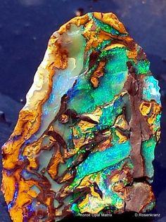 Opala de Yowah, matriz, na área de Paroo Shire, Queensland, Austrália.