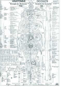 Anatomia oculta                                                                                                                            Mais