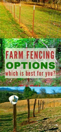 Fencing is a never ending job on the farm. Get all the information you need on all the farm fencing options so you can choose the best option for your homestead!