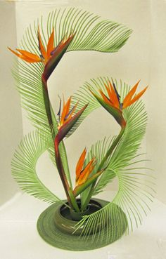 Design using sago and Strelitzia by Carole Martin, Florida Federation of Garden Clubs Floral Design Studies instructor.   Read more: http://davesgarden.com/guides/articles/view/4538/#ixzz2lADId700