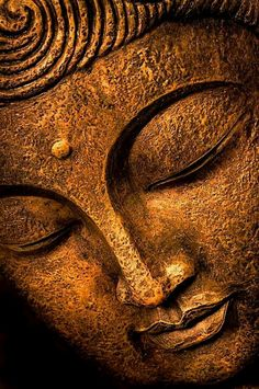"Face of Buddha in Meditation-- Article of ""The art of self-forgiveness"" by Rick Harrison, Phd Gautama Buddha, Buddha Buddhism, Buddha Face, Buddha Zen, Buddha Quote, Buddhist Meditation, Buddhist Art, Buddhist Sayings, Meditation Images"