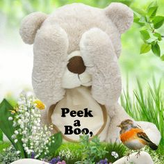 Media-Cache-Ak0.pinimg.com st patrick/gifs | Peek A Boo, Good Morning Pictures, Photos, and Images for Facebook ...
