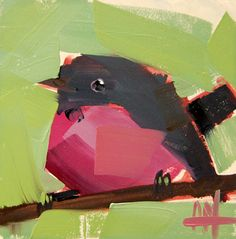Pink Breasted Robin no. 12 original bird oil painting by Angela Moulton 5 x 5 inch on panel mounted on birch plywood