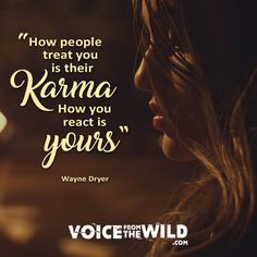 """""""How people treat you is their karma; how you react is yours"""" ~ Wayne Dryer #voicefromthewild"""