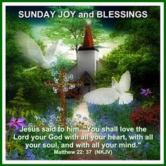 Thank you sweet Holly. Blessed Sunday Morning, Happy Sunday Images, Love The Lord, Jesus Quotes, Good Morning Quotes, Cardinals, Blessings, Serenity, Bible Verses