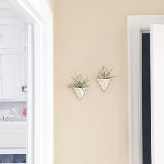 new wall planters  a