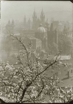 Beauty is in the eye of the beholder. This is a view of Prague from the Seminarska Garden, by Josef Sudek 1946 - 55