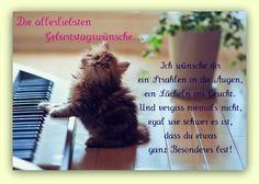 dreamies.de (eou5hb59a7o.jpg)