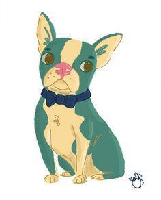 Boston Terrier by Emily Barrera