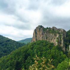 Sorprendentes lugares y paisajes en #Navarra. Por el bosque de la selva de Irati... (Foto stopandstare.nl en #Instagram) Saber más... http://www.turismo.navarra.es/esp/organice-viaje/recurso/Patrimonio/3041/La-Selva-de-Irati.htm