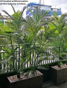 Green balcony privacy screen with UV-treated palms Balcony Privacy Plants, Balcony Privacy Screen, Privacy Landscaping, Balcony Garden, Small Balcony Design, Small Balcony Decor, Small Garden Design, Bamboo Screen Garden, Hot Tub Garden