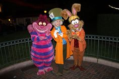 The March Hare was partying with guests during the night joined by the Mad Hatter and Cheshire Cat. Description from kennythepirate.com. I searched for this on bing.com/images