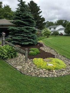 Genius Low Maintenance Rock Garden Design Ideas for Frontyard and Backyard - garden landscaping Outdoor, Plants, Easy Landscaping, Landscape Design, Backyard Landscaping Designs, Outdoor Gardens, Garden Design, Garden, Rock Garden Design