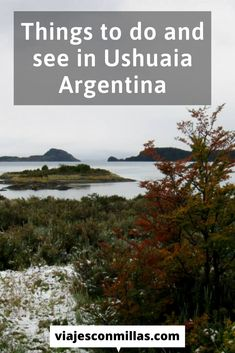 I've visited Ushuaia some years ago and I loved it! It's not a huge city but it has a lot of things to do and see. Check the best things you can do in Ushuaia, Argentina. Visit Argentina, Argentina Travel, Things To Do, Good Things, In Patagonia, Ushuaia, You Can Do, South America, City