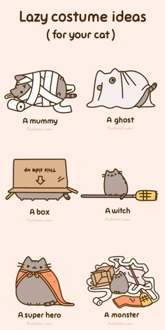 Lazy costume ideas for your cat.!