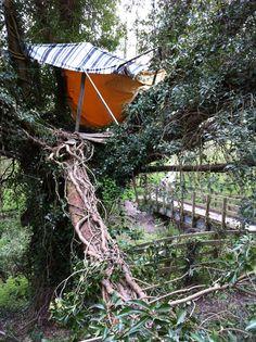 Tree house at Peatmoor Copse in West Swindon