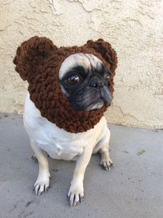 8a75e172823 Teddy Bear Ear Warmer-hats for dogs-pugs-silly dog hats-winter wear for dogs-clothing  for dogs by PugsNGiggles on Etsy