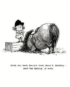 Once you have gained your pony's respect - half the battle is won