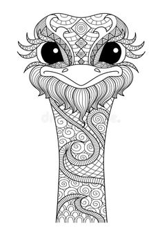 Hand drawn zentangle ostrich For colouring book shirt design logo tattoo Adult Coloring Book Pages, Mandala Coloring Pages, Animal Coloring Pages, Colouring Pages, Coloring Books, Coloring Sheets, Mandala Art, Arte Quilling, Zentangle Drawings