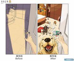 Ter ou não animais de estimação - Assuntos Criativos